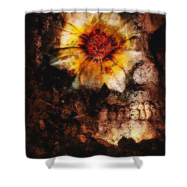 Past Life Resurrection Shower Curtain