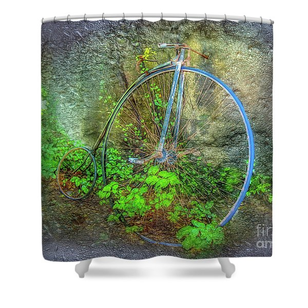 Past Times Shower Curtain