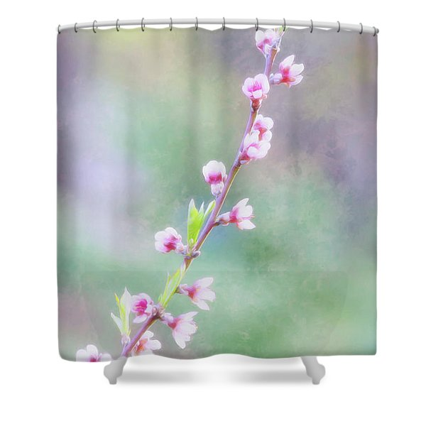 Pastel Painted Peach Blossoms Shower Curtain