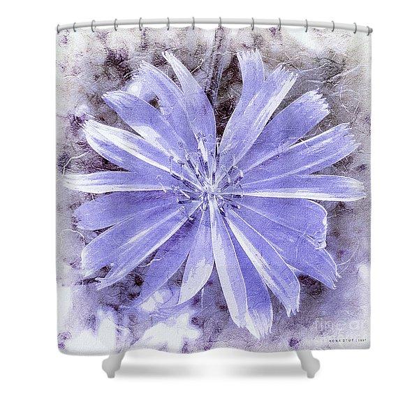 Purple Blue Daisy Shower Curtain