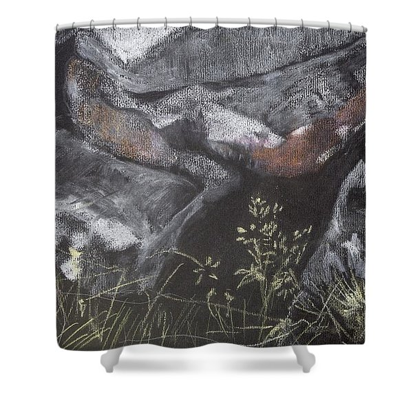 Pastel Stones And Plants On Black Shower Curtain
