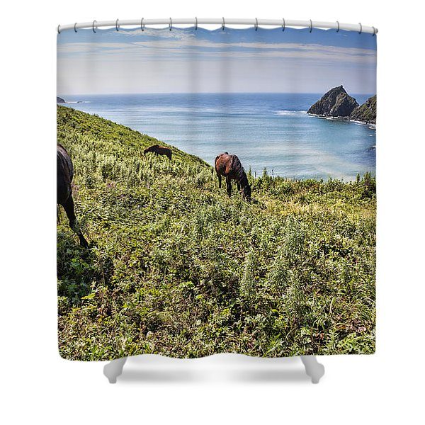 Pasture #2746 Shower Curtain
