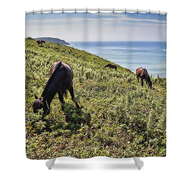 Pasture #2746 Shower Curtain