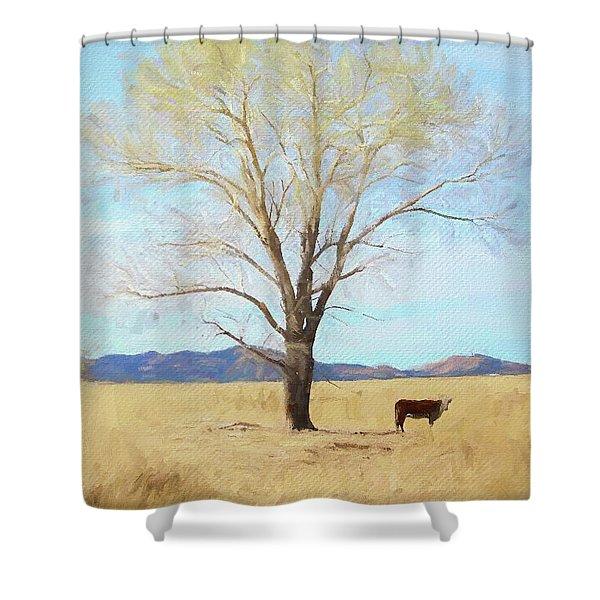 Patagonia Pasture 2 Shower Curtain