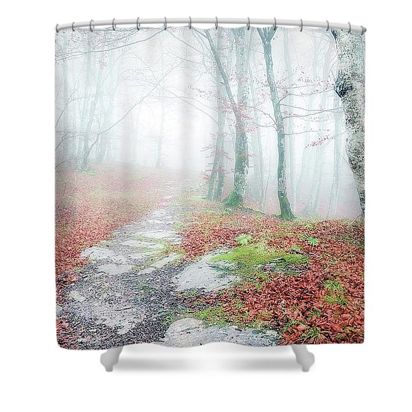 Path In The Forest Shower Curtain