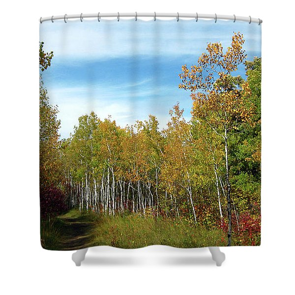 Path In The Woods 7 Shower Curtain