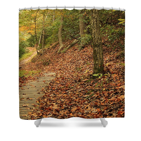 Path To Autumn Shower Curtain