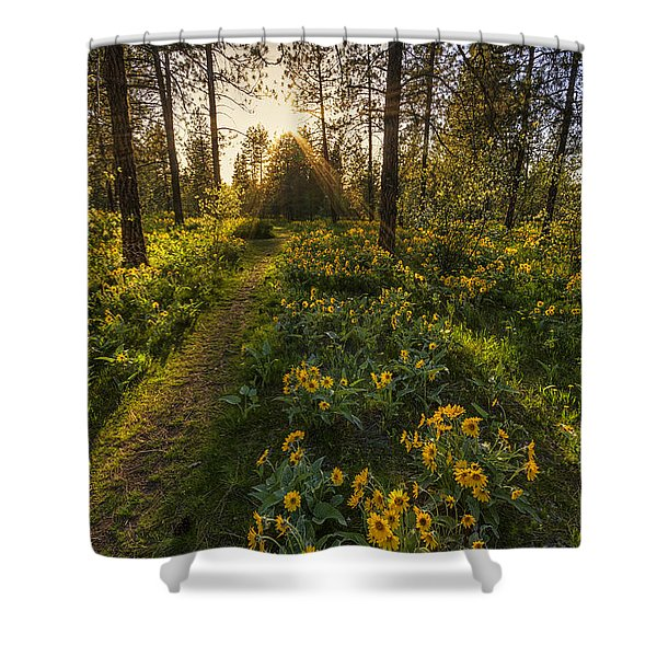Path To The Golden Light Shower Curtain