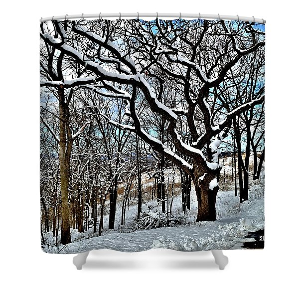 Path To The Lookout Shower Curtain