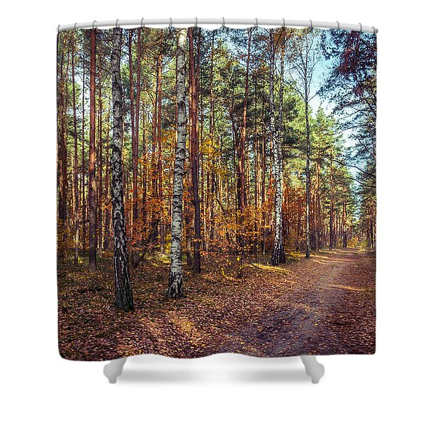 Pathway In The Autumn Forest Shower Curtain