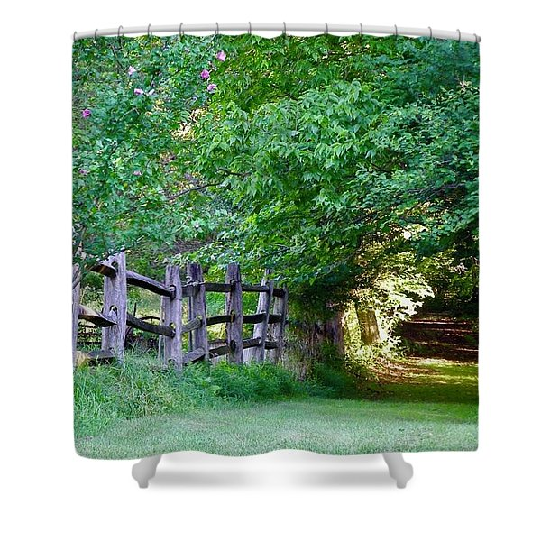 Pathway To A Sunny Summer Morning  Shower Curtain