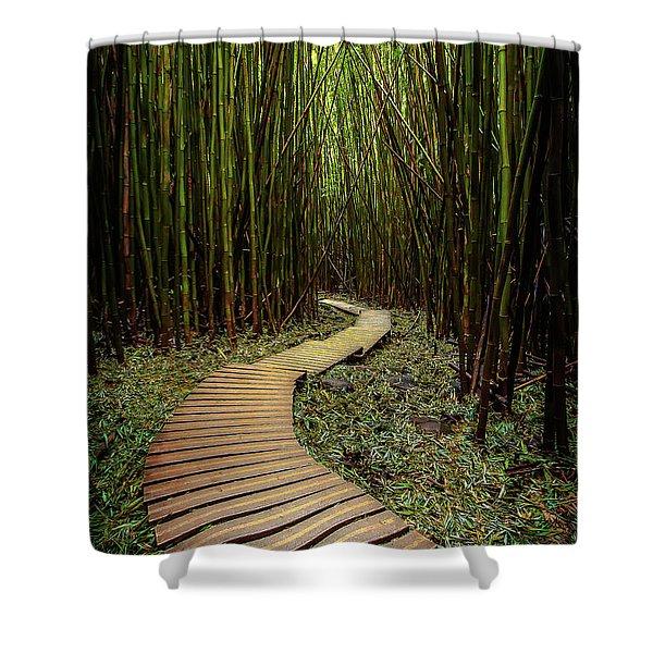 Pathway To Zen Shower Curtain