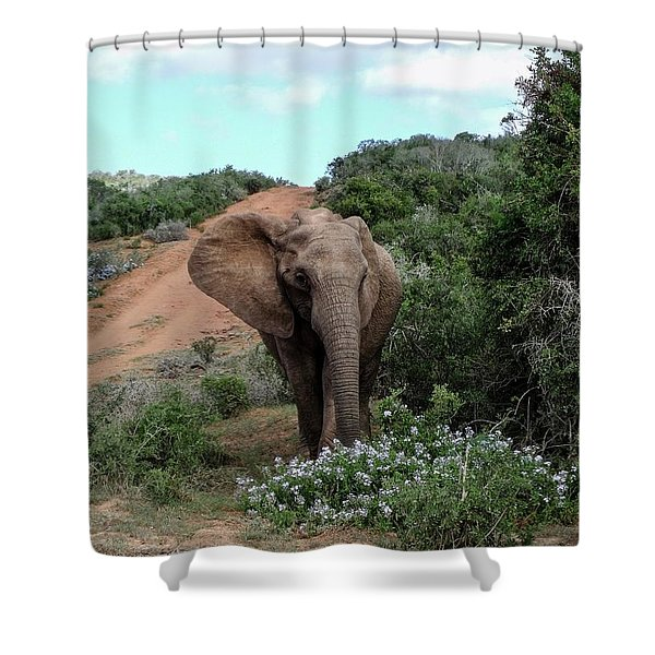 Pause To Smell The Flowers Shower Curtain