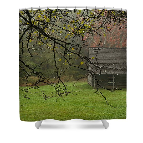 Paw's Cabin 5 Shower Curtain