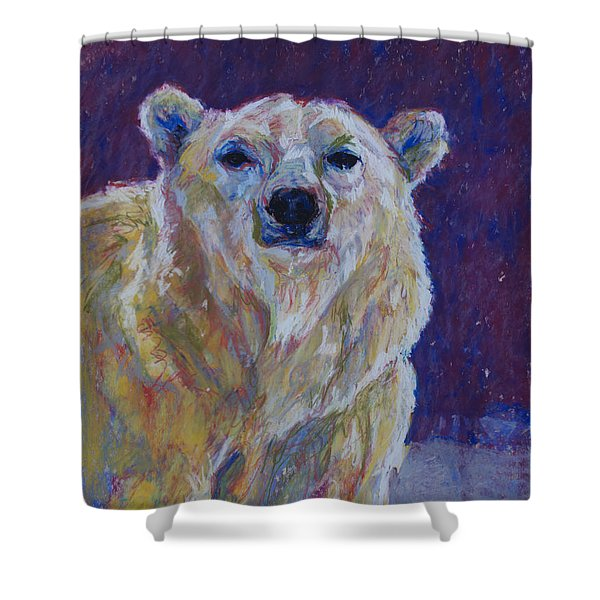 Pb IIi Shower Curtain