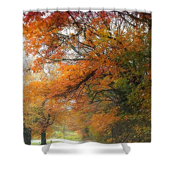 Peaceful Autumn Road Shower Curtain