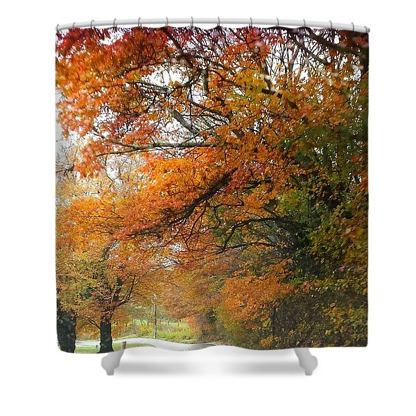 Peaceful Autumn Road Shower Curtain