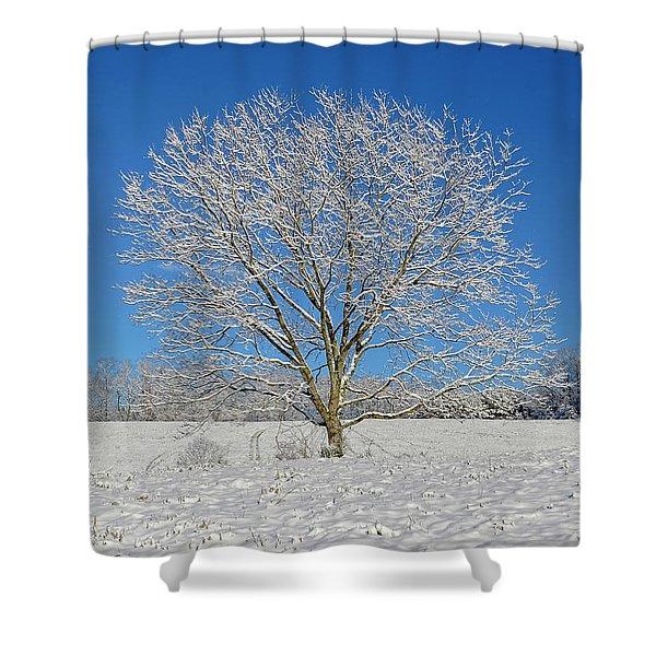 Peaceful Winter Shower Curtain