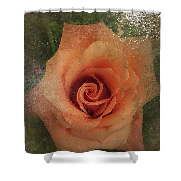 Peach Rose Shower Curtain