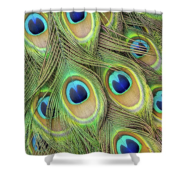 Living Peacock Abstract Shower Curtain