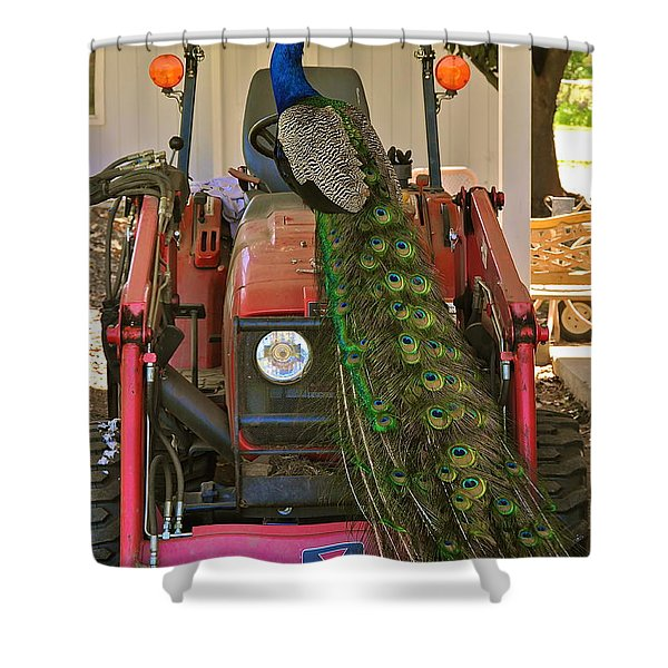 Peacock And His Ride Shower Curtain