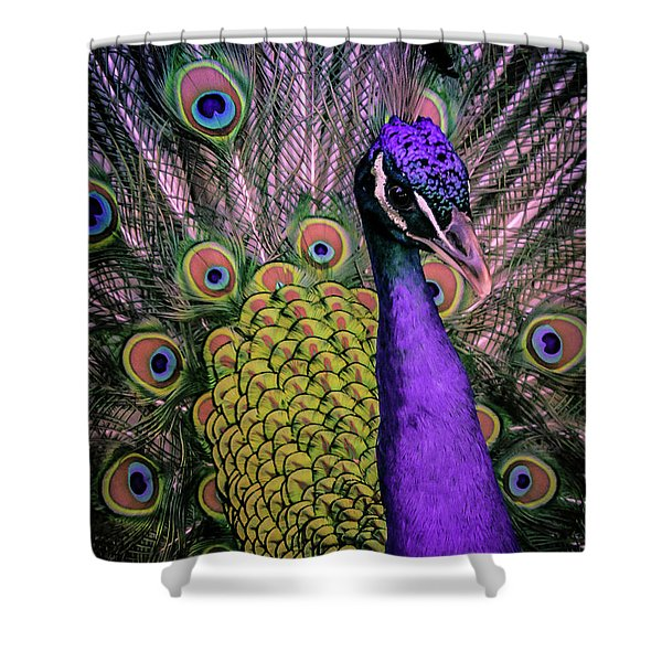 Peacock In Purple 2 Shower Curtain