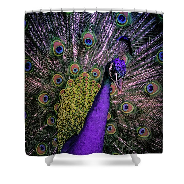 Peacock In Purple Shower Curtain