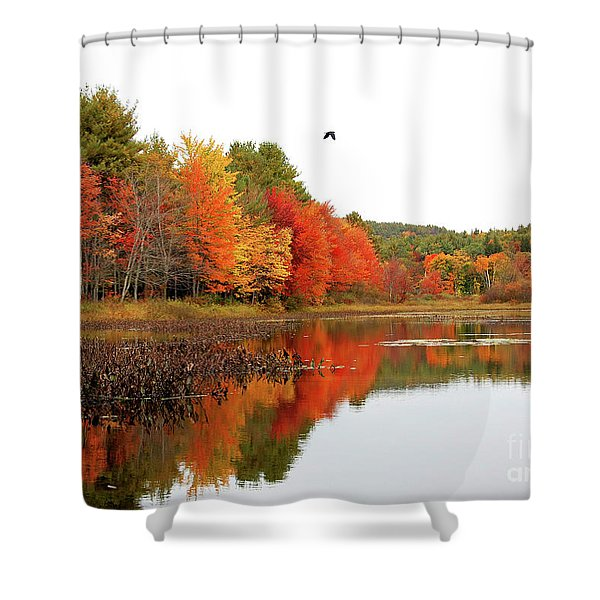 Peak New England Foliage Shower Curtain