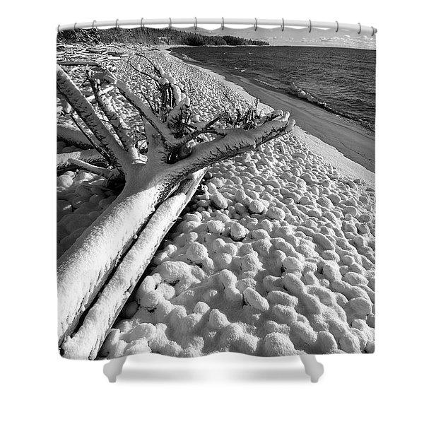 Pebble Beach Winter Shower Curtain