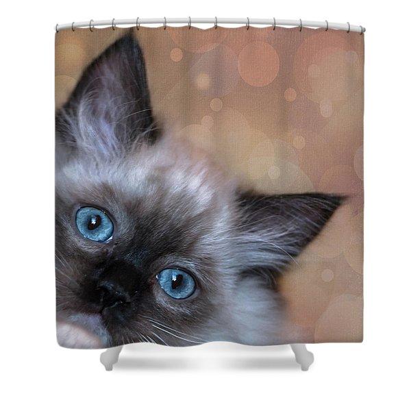 Peek-a-boo 2 Shower Curtain