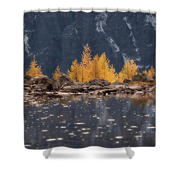 Peek A Boo Shower Curtain