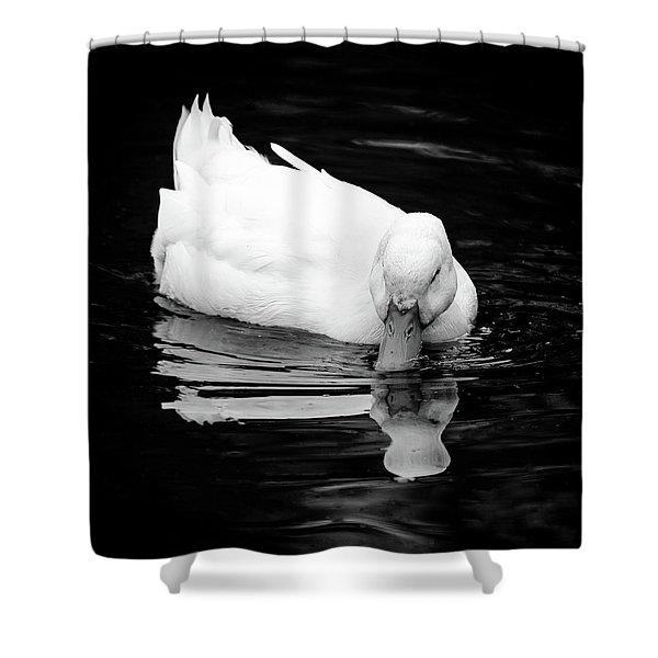 Peek-ing Duck Shower Curtain