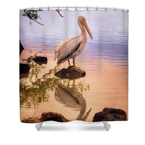 Pelican Connection 2 Shower Curtain