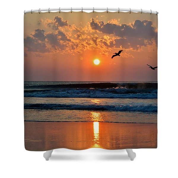 Pelicans On The Move Shower Curtain