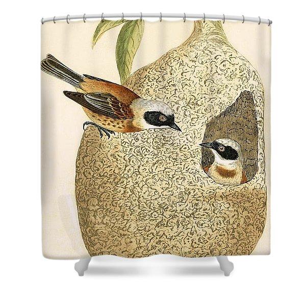 Penduline Tit Shower Curtain