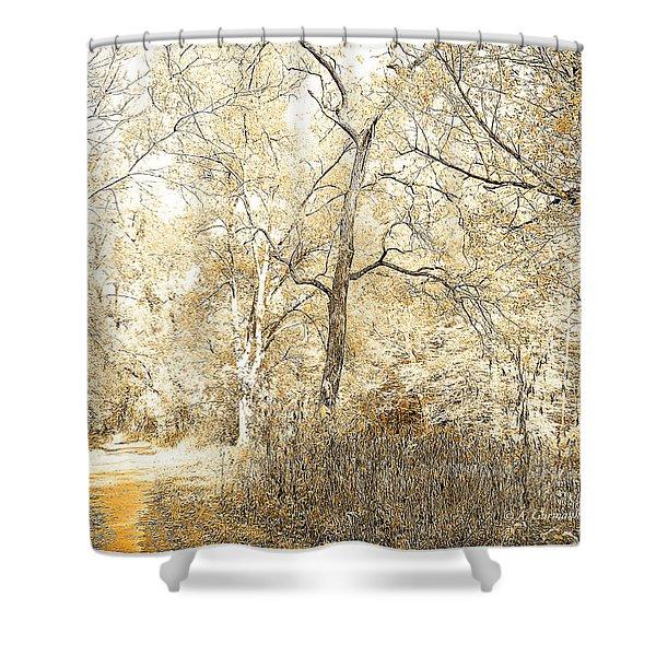 Pennsylvania Autumn Woods Shower Curtain