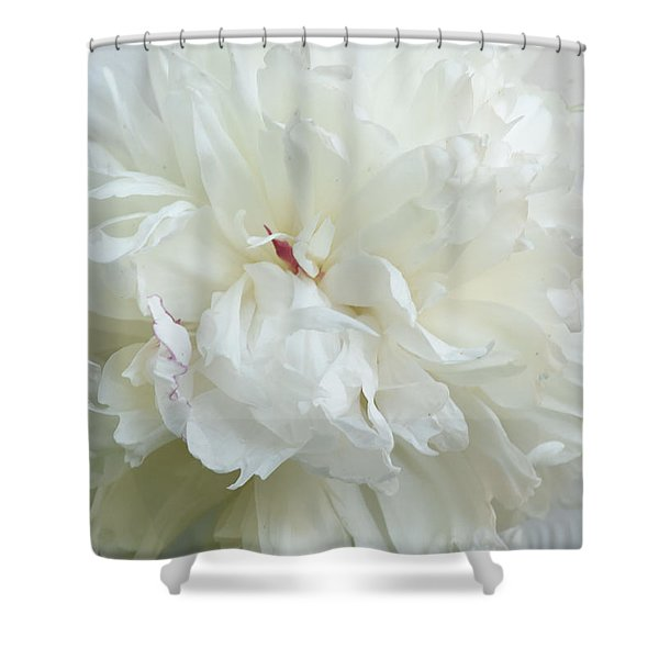 Peony In White Shower Curtain