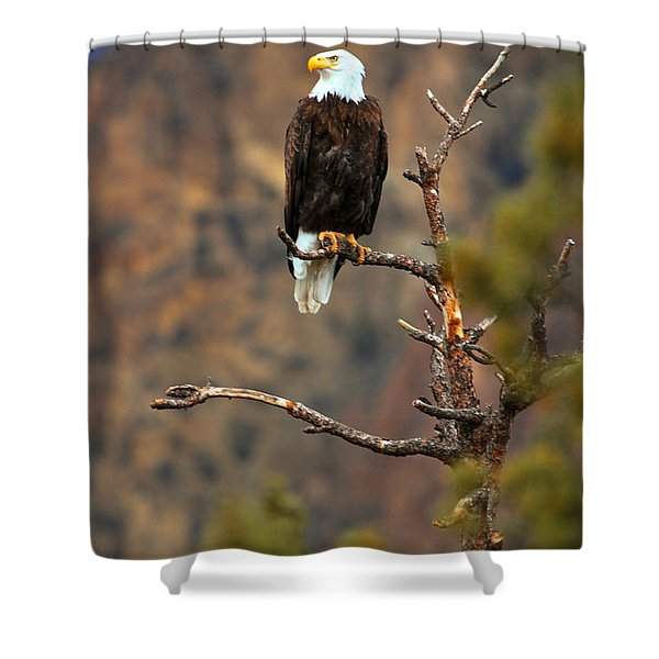 Perched At Smith Rock Shower Curtain