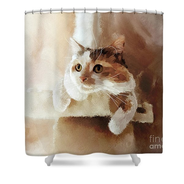 Perched Shower Curtain