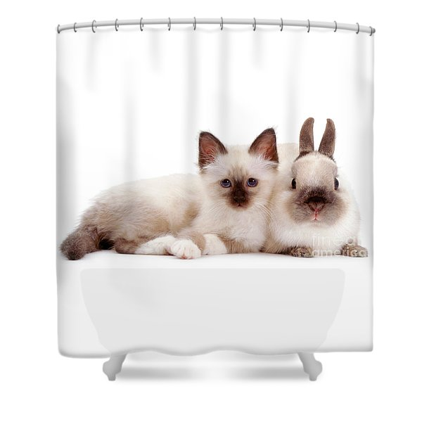 Perfectly Paired Pals Shower Curtain