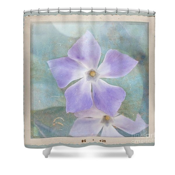 Periwinkle Stars Shower Curtain