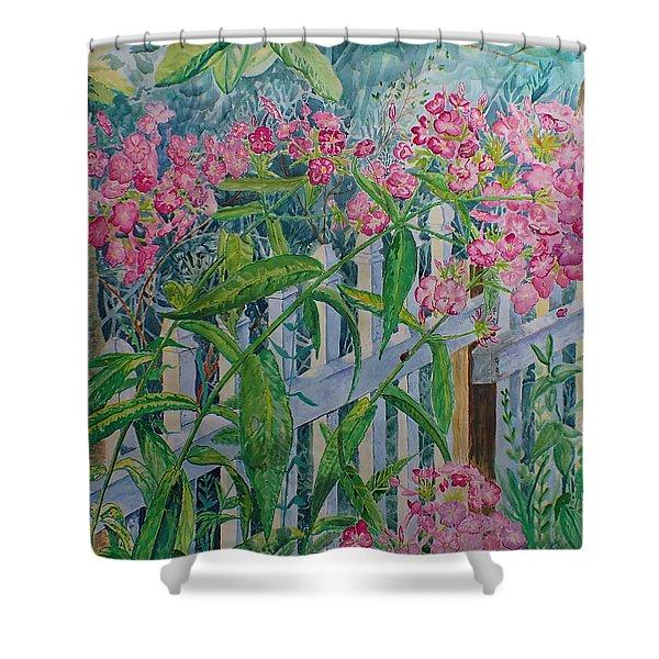 Perky Pink Phlox In A Dahlonega Garden Shower Curtain