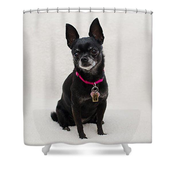 Perlita 5 Shower Curtain