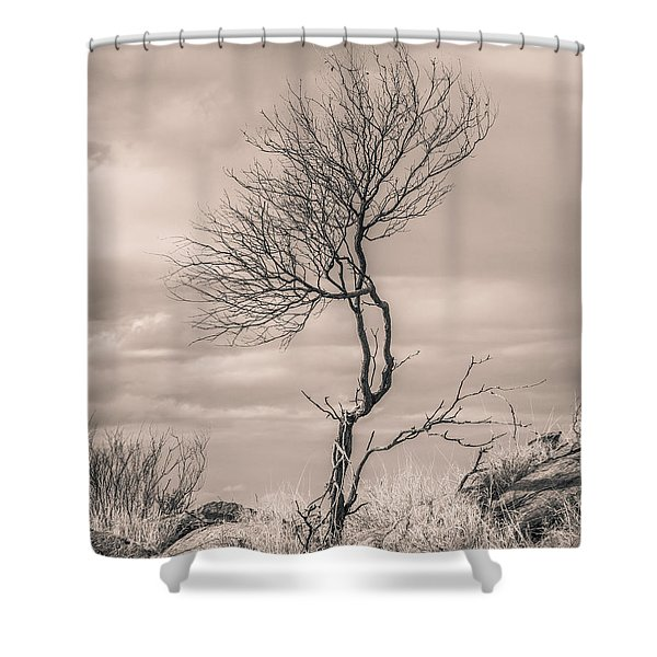 Perseverance Shower Curtain