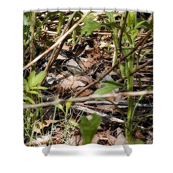 Perspective Of A Camouflage Shower Curtain
