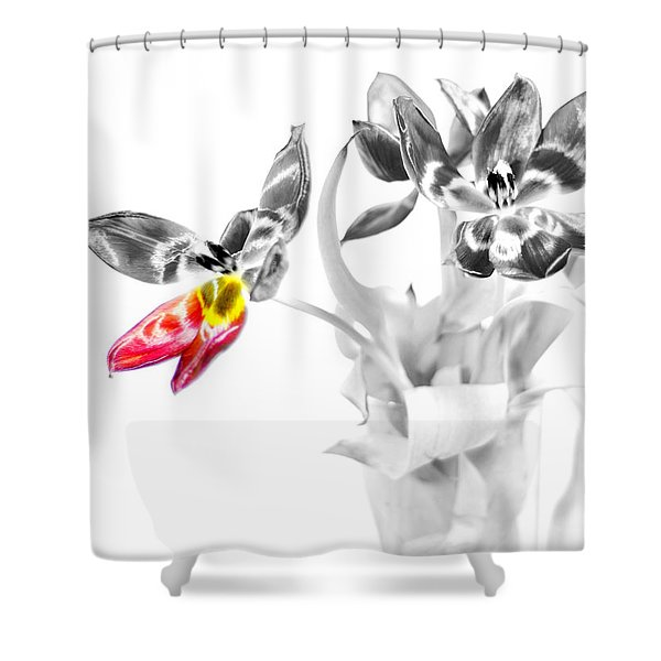 Petal Wings Fly Shower Curtain