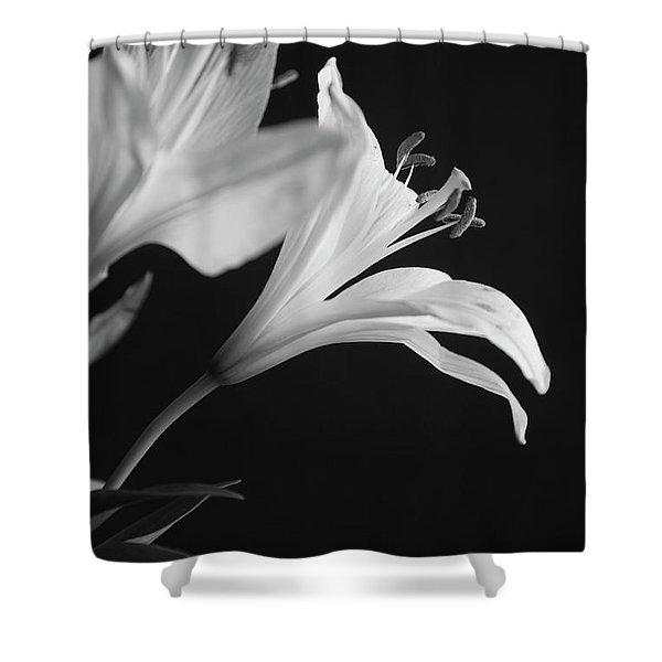 Petals' Light Shower Curtain