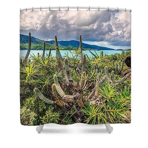 Peterborg Cactus Shower Curtain