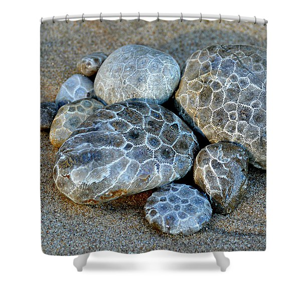 Petoskey Stones Shower Curtain