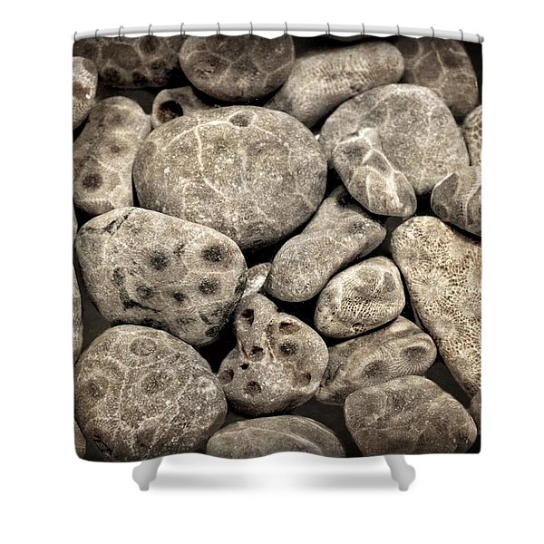 Petoskey Stones Vl Shower Curtain